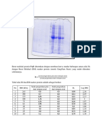 analisis data SDS-PAGE-1.docx