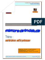 134973836-Controle-Interne-Outil-de-Performance.pdf