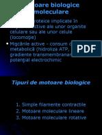 motoare05.pdf