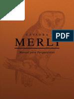 Manual Para Peripatéticos - Merlí