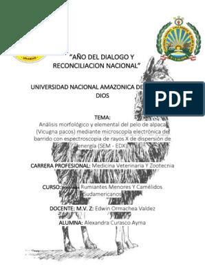 Análisis Morfológico Y Elemental Del Pelo De Alpaca Zinc
