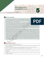Principios de Neuroanatomia