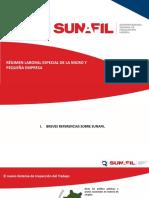 PPT-RLE-MYPE-INPA.pdf