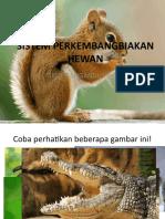 Sistem Perkembangbiakan Hewan