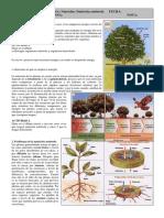 ficha2ESO-Nutrición2 (1).pdf