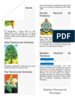 Ave Nacional de Honduras - Para Combinar