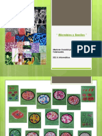 Melanie Guadalupe Flores Vzla_302 a Info_ Estampa Microbios y Bacilos