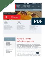 Tanda-tanda Infestasi Kecoa Rentokil Pest Control Indonesia