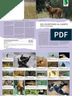 59 Del Escritorio 138 Especies Amenazadas