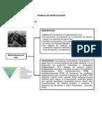 Filo Proteobacteria