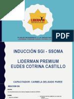 Plan de Seguimiento a La Capacitación Del Liderman Premium