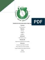 Biologia Practica 6 Clorofila
