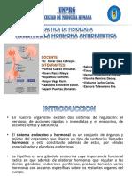 170504936-Accion-de-La-Adh.pptx