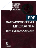 Патоморфология Миокарда При Ушибах Сердца