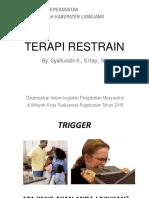 TERAPI_RESTRAIN.pptx