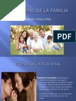 CICLO-VITAL-DE-LA-FAMILIA.pptx