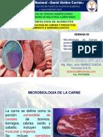 Semana 09 - Microbioogia de La Carnes, Conservas e Hidrobiologicos