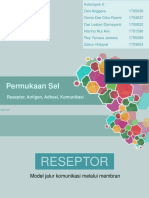 permukaan sel.ppt