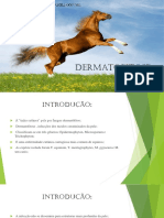 trabalho dermatofitose.pptx