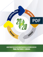 Guia practica Vision 2020