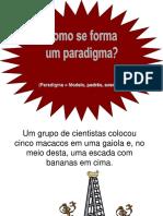 Livro Identidades Da EA Brasileira