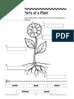Parts of a plant.pdf