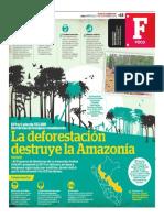 La Deforestación Destruye La Amazonía