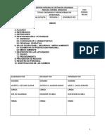 PG-019 PROCEDIMIENTO DE ENCOFRADO.doc