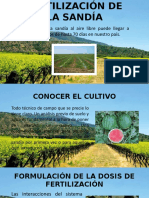 Fertilización de La Sandía