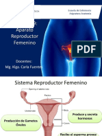 Clase 19 Reproductor Femenino (1)
