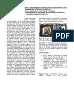 5-Etnobiología-en-los-procesos-de-salud-enfermedad