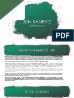 Kaneko Further Research