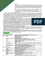 Proyectivas-Resumen TEST GRAFICOS