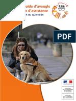 DMA - Le Chien Guide d'Aveugle Ou Le Chien d'Assistance