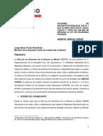 AMICUS CURIAE ACCIONES DE INCONSTITUCIONALIDAD 6/2018 Y SUS ACUMULADAS EN LAS QUE SE IMPUGNA LA LEY DE SEGURIDAD INTERIOR #SEGURIDADSINGUERRA