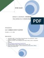 33510244-referat-geo-ITALIA.docx