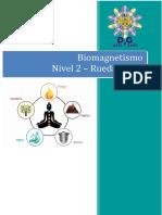 Apunte Biomagnetismo Rueda China