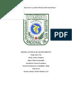 Sistema Nacional de Abastecimiento Original (1)