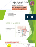 Hiperplasia Adenoamigdalar Listo Final