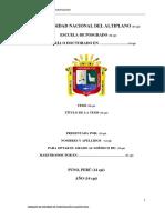 INFORME FINAL cuantitativa UNA PUNO.pdf