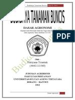 102623341 Budidaya Tanaman Buncis