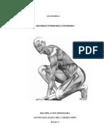 1185085306.Dossier Anatomía I Elena.pdf