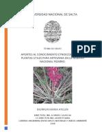 Aportes al conocimiento etnoecologico de platas útiles para artesanía en la Reserva Nacional Pizarro.
