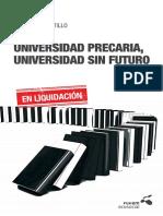 Universidad Precaria