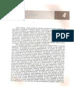kupdf.net_introducao-agrave-engenharia-quimica-nilo-indio-brasildocx.pdf