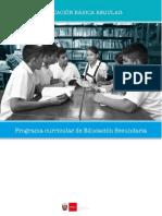 programa-nivel-secundaria-ebr.docx