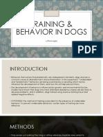 Training & Behavior in Dogs