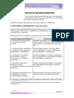 Funciones_cognitivas Y FASES