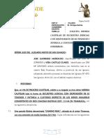 medida cautelar de secuestro judicial.docx
