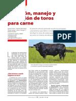 Gual et al 2018 - Seleccion, Manejo y Revisación de Toros Para Carne